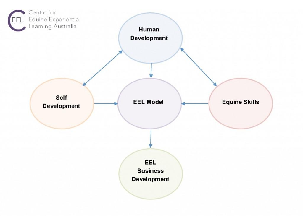 CEEL 5 competencies diagram2-0