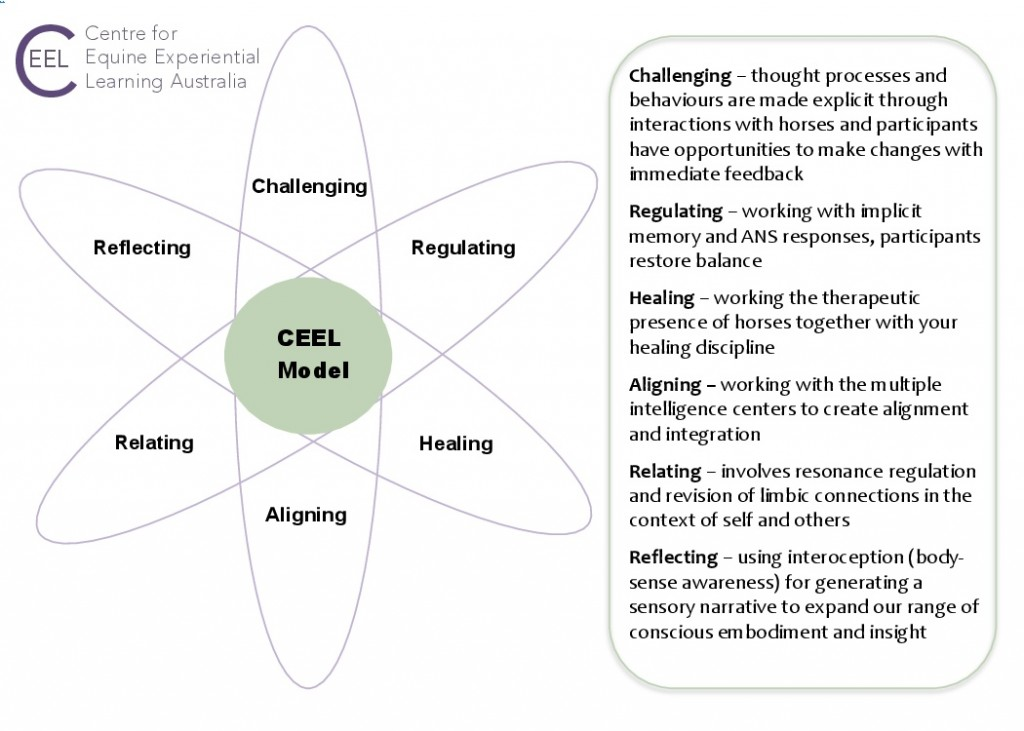 CEEL 6-petal model3 with definitions-0